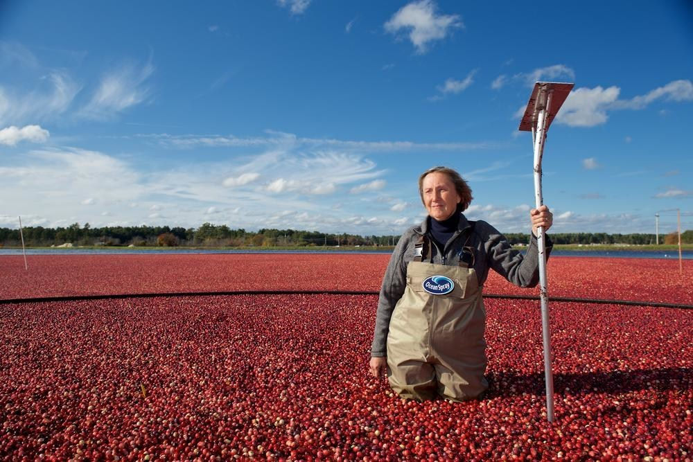 100% of Ocean Spray's Cranberries Verified as Sustainably Grown Using FSA, becoming the First Fruit Cooperative Worldwide to achieve a 100% FSA Verification