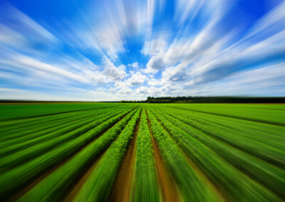 RESILIENT AGRICULTURE ACCELERATOR FUND