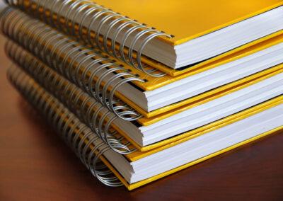 THESIS Supplier Case Study: NORCOM, INC